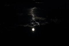 Moonlight_2014_09_07_0016 (FarmerJohnn) Tags: cloud moon lake reflection water night clouds canon suomi finland calm september silence midnight moonlight vesi kuu y laukaa jrvi pilvi keskinen syyskuu tyyni keskiy kuutamo valkola vedenpinta hiljaisuus septembermoon lakesurface canon7d heijatus anttospohja juhanianttonen ef1635l28iiusm