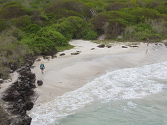Galapagos - San Cristobal-170