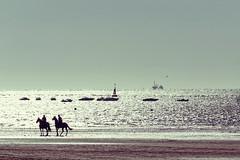 Sanlúcar (Esparkling) Tags: luz contraluz caballos mar andalucía playa arena reflejo barcas cádiz siluetas sanlucar esparkling