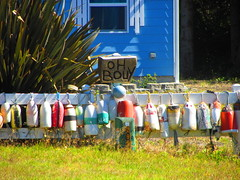 Oh Bouy - Hope you have a Happy Fence Friday (Happy Pheet Photography) Tags: