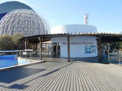 Aquarium (Going to the Zoo with Trebaruna) Tags: valencia zoo aquarium spain oceanografic loceanografic loceanograficvalencia aquariumvalencia