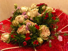 Valentine. (ost_jean) Tags: flowers valentine apple iphone 7 plus back dual camera 399mm f18 ostjean