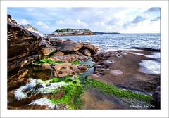 Moss (jongsoolee5610) Tags: seascape bareisland laperouse sydney australia sydneyseascape island moss