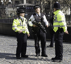Palace of Westminster: Floral tributes, armed police and business as usal following the terror attack (Ian Davidson photographer Protected by PIXSY www.p) Tags: armedpolice flowers houseofcommons housesofpaliament isil police railings security terroist westminster westminsterbridge attack crime gates guards guns murderedpc palaceofwestminster policemen political raid reaction respect terroistattack terror tributes viiolence