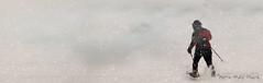 """Marche en raquettes ... ( P-A) Tags: raquettes hiver sport marche activité sortie balade neige froid brouillard lacdeschênes aylmerqc photos simpa© """"nikonflickraward"""" xlemondemerveilleuxdelaphoto"""