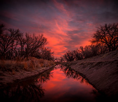 Down in the Ditch of Darkness (PT Photo) Tags: sunrise ditch dark sky clouds pink colors water trees lightroom5 pse12 colorado hdr dphdr ptphoto