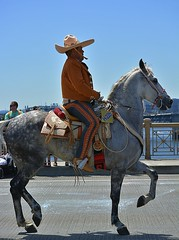 Fancy Riding (swong95765) Tags: rider outfit mexican sombrero parade equestrian style