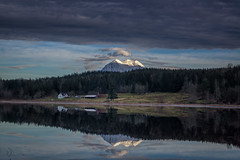 Sleep Tight (writing with light 2422 (Not Pro)) Tags: rapjohnlake mountrainier volcano stratovolcano washingtonstate lake reflections mountain trees ranch cows bluehour sunset richborder landscape