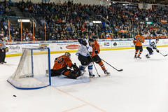 "Missouri Mavericks vs. Wichita Thunder, March 25, 2017, Silverstein Eye Centers Arena, Independence, Missouri.  Photo: © John Howe / Howe Creative Photography, all rights reserved 2017. • <a style=""font-size:0.8em;"" href=""http://www.flickr.com/photos/134016632@N02/33316637430/"" target=""_blank"">View on Flickr</a>"