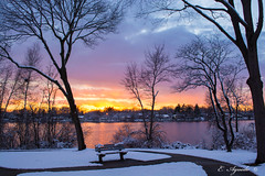 Park at sunset (E. Aguedo) Tags: warwick sunset sky snow winter water pond trees light reflection bench park rhode island new england ngc