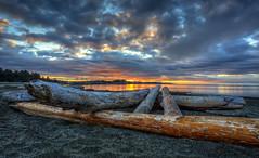 Logs (Paul Rioux) Tags: morning sunrise dawn daybreak seashore seascape logs driftwood clouds beach sand reflections colour vancouverisland victoria colwood westshore blue orange prioux