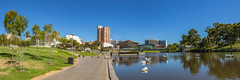 Adelaide Riverfront (Anthony's Olympus Adventures) Tags: adelaide adelaidecbd southaustralia australia sa city cityscape streetscape panorama rivertorrens riverfront water sky stunning wow beautiful amazing nice afternoon weather clouds olympusem10 raw panoramic cityview citycenter river waterway publicspace downtown citycentre adl urban olympus olympusomd photo photography photogenic pano