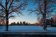 095/365 - Cool and Clear (laureanophoto) Tags: project3652017 snow cool cold 365 clear dawn morning ice freeze
