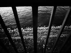 Grid (karldue) Tags: grid river rhine düsseldorf karldue