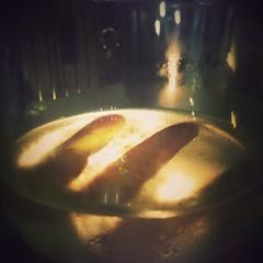 #186/365 Limpossibilit, come il vino inebria luomo che la gusta. (Emily Dickinson) (Chiara M.) Tags: square squareformat unknown 365 android iphoneography instagram instagramapp uploaded:by=instagram nexus5 chiara365 progetto365ig