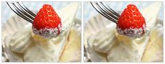 cake stereophotography 3d crosseye crosseyed strawberry cream stereoview stereograph ichigo いちご イチゴ crossview 苺 ショートケーキ cc2 corsseye 交差法 いちごショート イチゴショート corsseye3d 寄り目立体 交差法立体視