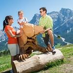 04_Uno dei protagonisti del Dolomiti Rock Zoo_molography.it