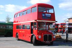 VLT9 1959 AEC Routemaster ex LT RM9 (Pete Edgeler) Tags: routemaster brooklands aec rm9 classicbus