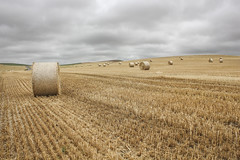 Im Juli (Nitekite) Tags: canon frankreich sommer landwirtschaft feld wolken nordpasdecalais stroh ernte weizen escalles nitekite