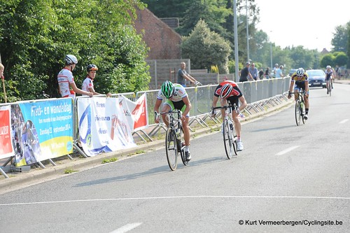 Geel Oosterlo  (344)