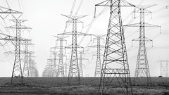 high tension / high key (Mr.  Mark) Tags: bw ontario tower lines contrast giant photo blackwhite pattern power geometry stock perspective electricity highkey hightension markboucher