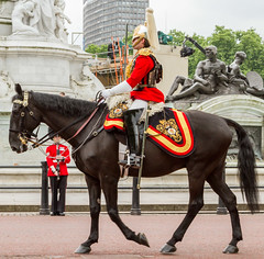 Trooping the Colour 2014 (taishanpanda24) Tags: charity old city greatbritain trees summer england horses people urban horse london monument public statue gold memorial europe display unitedkingdom balcony flag capital crowd guard ceremony security palace victoria queen buckinghampalace mounted marching soldiers guns british marble guards crowds metropolitan queenvictoria royalty monarchy cavalry weapons horseriding themall thequeen victoriamemorial royalfamily regiment pomp queensguard ceremonial queenelizabethii queensbirthday pageantry thepalace troopingthecolour householdcavalry cityofwestminster footguards royalstandard bearskins themonarchy angelofjustice angeloftruth sirthomasbrock sirastonwebb thelifeguards grade1listedbuilding officialbirthday bannersofarms