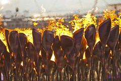 2012 London Summer Olympic Games cauldron (Anthony Quintano) Tags: fire 2012 olympicgames olympictorch summergames londonolympics summerolympicgames olympiccauldron
