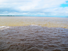 Encontro das guas5 (Hotel Amazon Jungle Palace) Tags: hotel orla diverso turismo manaus floresta lazer amazonas amazonia rionegro encontrodasaguas botos riosolimes amazonjunglepalace ponterionegro