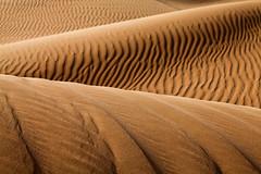 Sandy Abstraction (TARIQ-M) Tags: art texture sahara landscape sand waves pattern desert ripple patterns dunes wave ripples camels riyadh saudiarabia dahna canoneos5dmarkii tariqm aldahna tariqalmutlaq