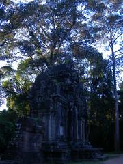 Angkor Thom - 117 (txikita69) Tags: cambodia khmer angkorwat siemreap angkor taprohm bayon angkorthom banteaykdei camboya thommanon bakseichamkrong phnomkrom khmerempire tonlesap terrazadeloselefantes banteaysamre regencyangkorhotel