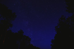 Weekend Shenanigans in the Forest (Teri Hofford Photography) Tags: camping trees portrait sky lake selfportrait night forest stars moss day fineart toyota yaris wellman