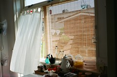 (Ffon) Tags: light summer holland film window netherlands kitchen cat 35mm canon nederland curtains breeze sureshot