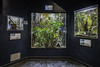 Houston Zoo Insectarum Interior NS (Mabry Campbell) Tags: usa architecture photography zoo photo texas photographer realestate unitedstates image interior room houston insects august photograph commercial inside 100 client bellows fineartphotography f63 2014 tiltshift architecturalphotography 17mm insectarium enclosures commercialphotography commercialrealestate commercialarchitecture commercialproperty 16sec architecturephotography commercialinterior houstonphotographer porticogroup wsbellows tse17mmf4l mabrycampbell august222014 wombathouse 20140822h6a7999