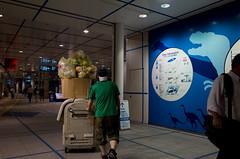 Oasis 21, Sakae, Nagoya (kinpi3) Tags: street japan night nagoya gr sakae ricoh oasis21
