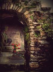 the secret corner (Rino Alessandrini) Tags: flowers scale stone corner private arch secret courtyard hidden scala fiori pietra arco cortile nascosto angolo segreto privato