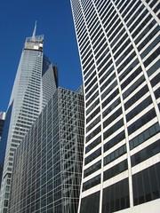 New York City Curves