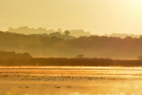 World End Pond sunrise