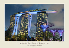 Supertrees and Marina Bay Sands (williamcho) Tags: copyright nature architecture singapore events shows cloudforest attraction marinabay bestofsingapore touris flowerdome gardensbythebay marinabaysands iconiclandmark supertrees topazlabadjust williamcho lightsmusicalshow
