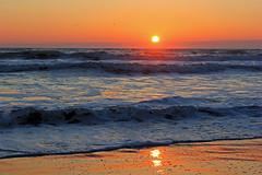 Virginia Beach Sunrise (TomIrwinDigital) Tags: ocean beach sunrise virginia atlantic virginiabeach