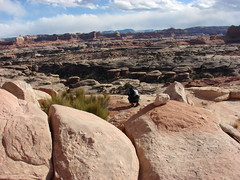 DSC02646 (Aggiewelshes) Tags: march hiking canyonlandsnationalpark canyonlands southernutah 2008
