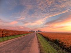 Down the Open Road (kendoman26) Tags: road sky clouds rural cornfield fuji fujifinepix ruralamerica soybeanfield grundycountyillinois fujifinepixf750exr