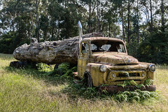 LookMeLuck.com_Australia-010.jpg (Look me Luck Photography) Tags: tree abandoned nature truck landscape oz transport australia paisaje bluemountains camion transportation vehicle newsouthwales aussie paysage downunder transporte oceania abandonn abandonado camin oceanica vehculo ocanie oceana terraaustralis