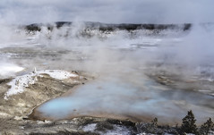 Porcelain Basin (Patty Bauchman) Tags: porcelainbasin geyserbasin yellowstonenationalpark geyser nature landscape