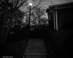 The Steps & the Lamp Post (that_damn_duck) Tags: blackandwhite monochrome stairs steps lamppost tree nighttime bw blackwhite