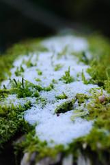 20170107_Gorge_du_Fier (3 sur 14) (calace74) Tags: fier gorgedufier lovagny rhonealpes france gel hiver neige paysage rivière