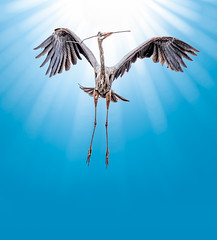 Toward The Light (Wes Iversen) Tags: ardeaherodias brighton greatblueherons kensingtonmetropark michigan milford tamron150600mm birds herons nature nestbuilding photomanipulation rays waterbirds wildlife