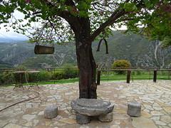 Μ. Αγ. Παρασκευης DSC01511 (omirou56) Tags: 43ratio sonydscwx500 αιτωλοακαρνανια μαγπαρασκευησ δυτικηελλαδα ελλαδα δεντρο tree greece outdoor