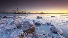 Winter mood (Mika Laitinen) Tags: balticsea canon5dmarkiv europe finland helsinki kallahdenniemi leefilters scandinavia suomi vuosaari beach cliff cloud color dusk frozen ice landscape longexposure nature ocean outdoor rock sea seascape shore sky snow sunset twilight winter uusimaa fi