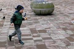 Feed the Birds (CameraCat.) Tags: canon canon550d krakow cracow poland warsaw city colour birds boy street candid