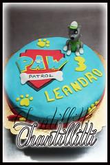 paw patrol (Chantillitti) Tags: pdz